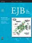 European Journal of Biochemistry