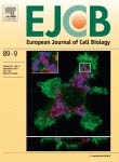 European Journal of Cell Biology