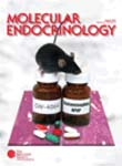 Molecular Endocrinology