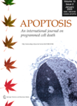 Apoptosis